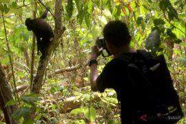 BUMN HADIR - SMN NTT belajar konservasi Cagar Alam Tangkoko