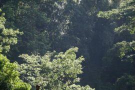 Taman Wisata Alam NTB ramai pengunjung saat libur lebaran