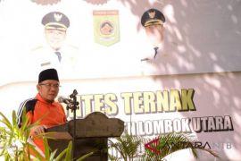 Populasi ternak Lombok Utara meningkat 64 persen