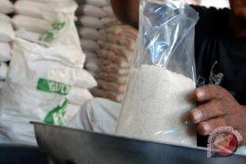 Ini beberapa faktor daya saing gula Indonesia rendah