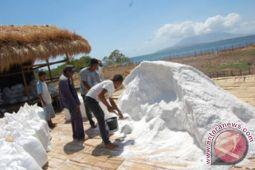 KKP kembangkan garam rakyat di NTT