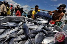 China imports NTT's skipjack Tuna to test local market