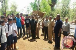 Puting Beliung Landa Timor Tengah Utara
