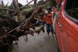 BPBD Sabu masih data kerugian akibat banjir