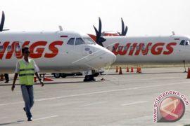 Penerbangan Kupang-Lombok menyemarakkan arus wisatawan