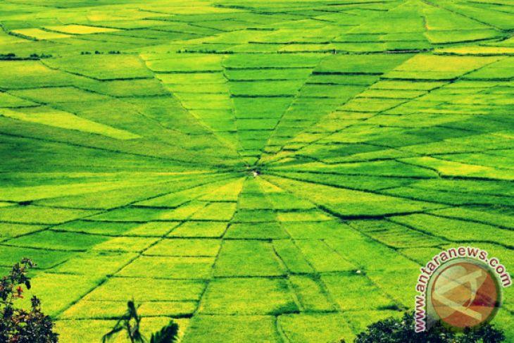 Nusa Bunga dan Kemolekan Alam Kelas Dunia