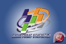 BPS Papua: sensus ekonomi dimulai Mei 2016