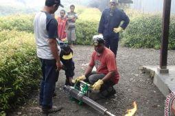 Dinkes Papua dan Kabupaten Yalimo segera 'fogging' nyamuk DBD