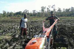 TNI di Merauke bantu petani bajak sawah