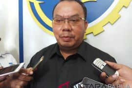 Pasutri pembunuh anak di Jayawijaya dihukum belasan tahun penjara