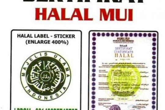 UKM Urus Sertifikasi Halal Gampang kok, Produksi Makin Terjamin Mutunya