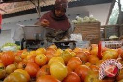 Petani Keluhkan Harga Tomat Anjlok
