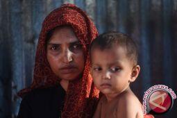 Gajah liar injak pengungsi Rohingya hingga tewas