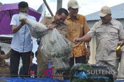 Tambak udang supra intensif skala rakyat hasilkan 700 kg (Vidio)