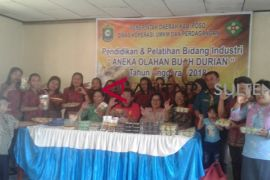 Karya ibu-ibu di kampung durian