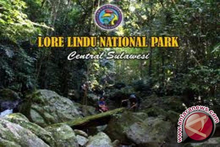 Masyarakat Lindu  jaga keberadaan kawasan taman nasional