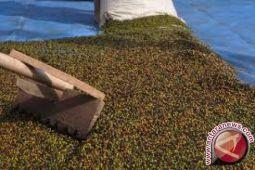 Di Kendari, harga lada capai Rp70.000/kg