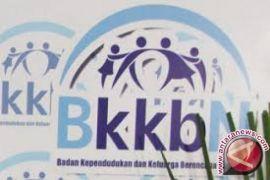 BKKBN Sultra gelar sosialisasi peningkatan kinerja penyuluh