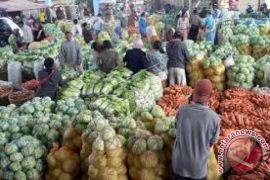 Harga sayuran di Kendari turun