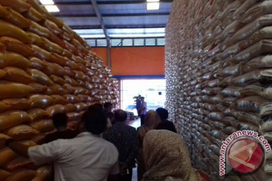 Ketahanan stok beras Bulog Sultra sembilan bulan