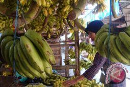 Hati-hati memilih pisang
