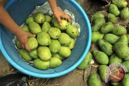 DPR-LIPI bantu Musi Banyuasin 2.000 bibit buah