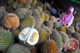 Festival makan durian