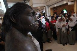 Museum pamerkan manusia purba sangiran