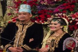 Ngunduh mantu Presiden Jokowi diawali upacara adat sembelih kerbau