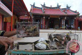 Umat Budha tolak kampanye politik di vihara bodhijaya