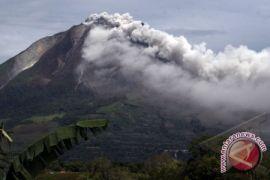 Material erupsi gunung Sinabung sampai ke langkat