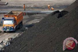 Dishub berikan toleransi angkutan batubara Muaraenim - Lahat