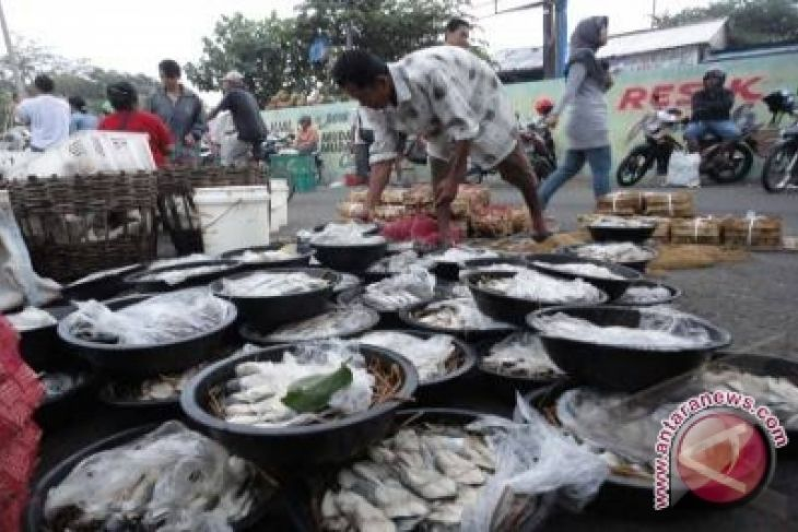 Pasokan Kurang Lancar Harga Ikan Laut Di Palembang Naik