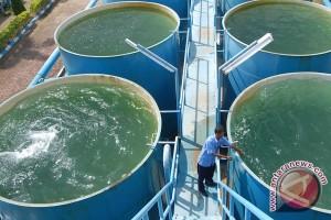 PDAM Pekalongan Usulkan 1.000 Sambungan Air bagi Warga Miskin