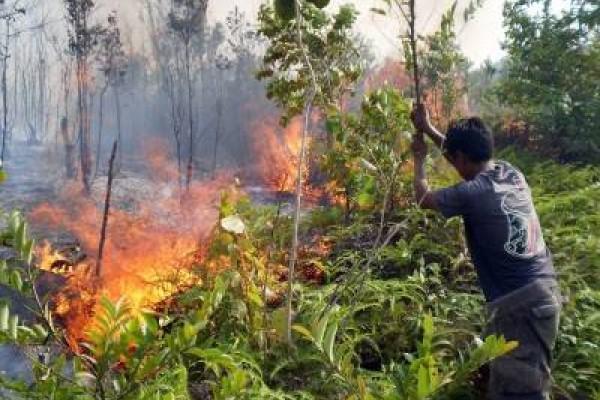Perhutani Surati Desa Terdekat Ikut Antisipasi Kebakaran Hutan