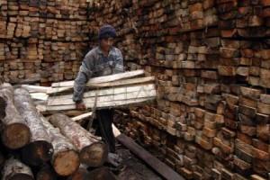 Ekspor Barecore Ditargetkan Senilai 500 Juta Dolar