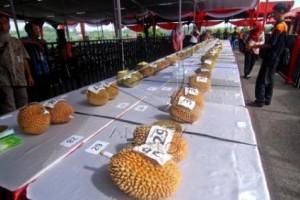 Dua kali batal, Pekalongan segera gelar Festival Durian 2018