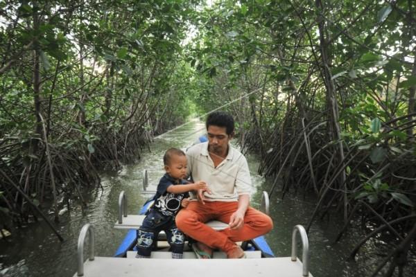 Minimalkan Abrasi, Tanam Mangrove Juga Menambah Penghasilan Ekonomi Pesisir