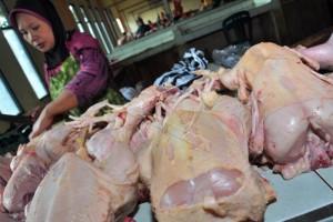 Harga Daging Ayam Ras di Temanggung Naik