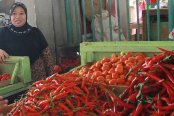 Harga Cabai Rawit Berangsur Turun di Magelang