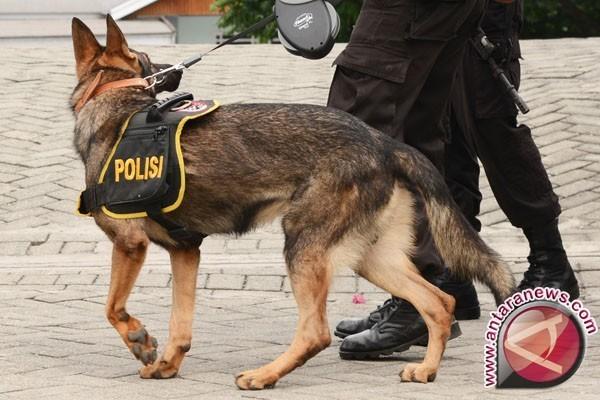 Polres Batang kerahkan anjing pelacak antisipasi teror