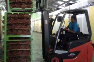 Petani Bawang Merah Manfaatkan Gudang Pendingin milik PT Pura Group