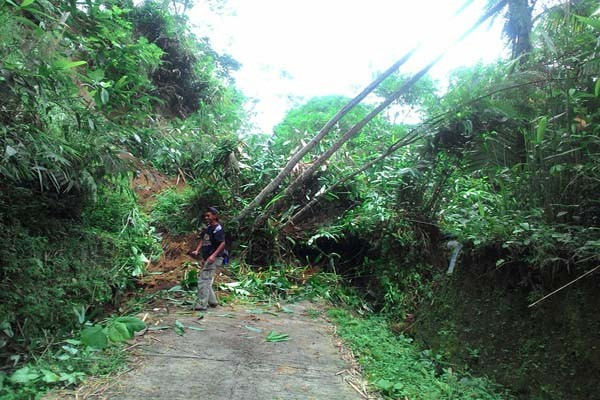Landslide Damages 13 Homes in Banyumas