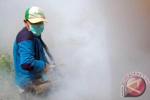 Telan Korban, Kasus DBD Masih Mengancam Warga Temanggung