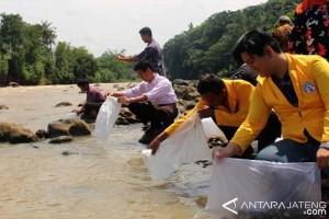 Untidar Tebar 40.000 Bibit Ikan di Kalii Progo