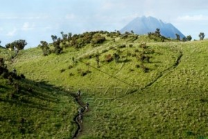 Pendaki asal Selandia Baru hilang di Merbabu, SAR sisir lokasi