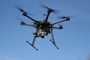 Studi: Penglihatan Lebah Bisa Ubah Cara Drone Melihat Dunia