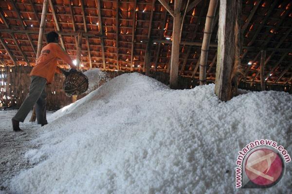 KIARA Sebut Garam Impor lebih Murah 10 Persen