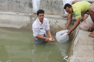 Lelang proyek renovasi balai benih ikan Kudus dimulai