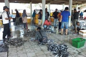 Nelayan Cilacap Mulai Panen Ikan Bawal Putih